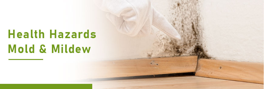 Health Hazards of Mold & Mildew