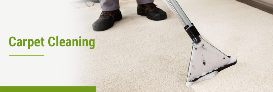 Carpet Cleaning Service by Teasdale Fenton